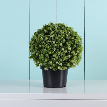Green Hues Bean Ball Plastic Pot