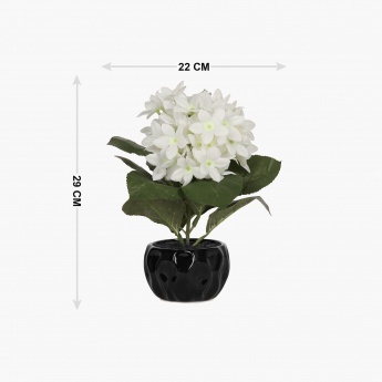 Sachi Potted Hydrangea in Ceramic Pot