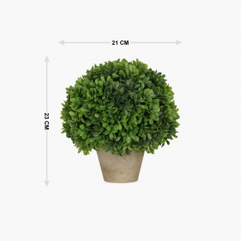 Sachi Potted Green Bean Ball Plastic Pot 20cm