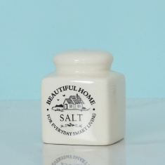 Beautiful Home Salt Shaker