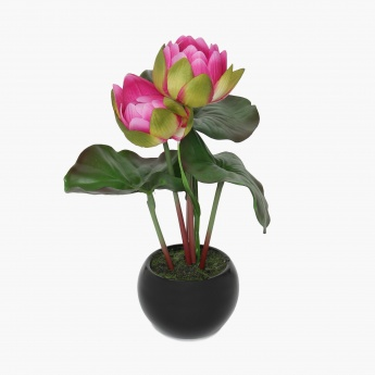 Sachi Lotus In Ceramic Black Pot